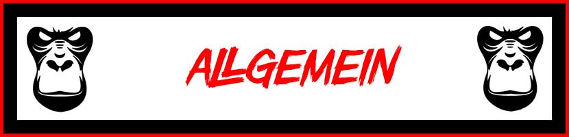 Allgemein-Kat