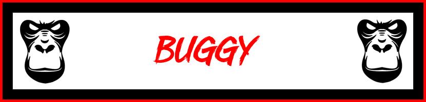 LC Racing 1-10 Buggy