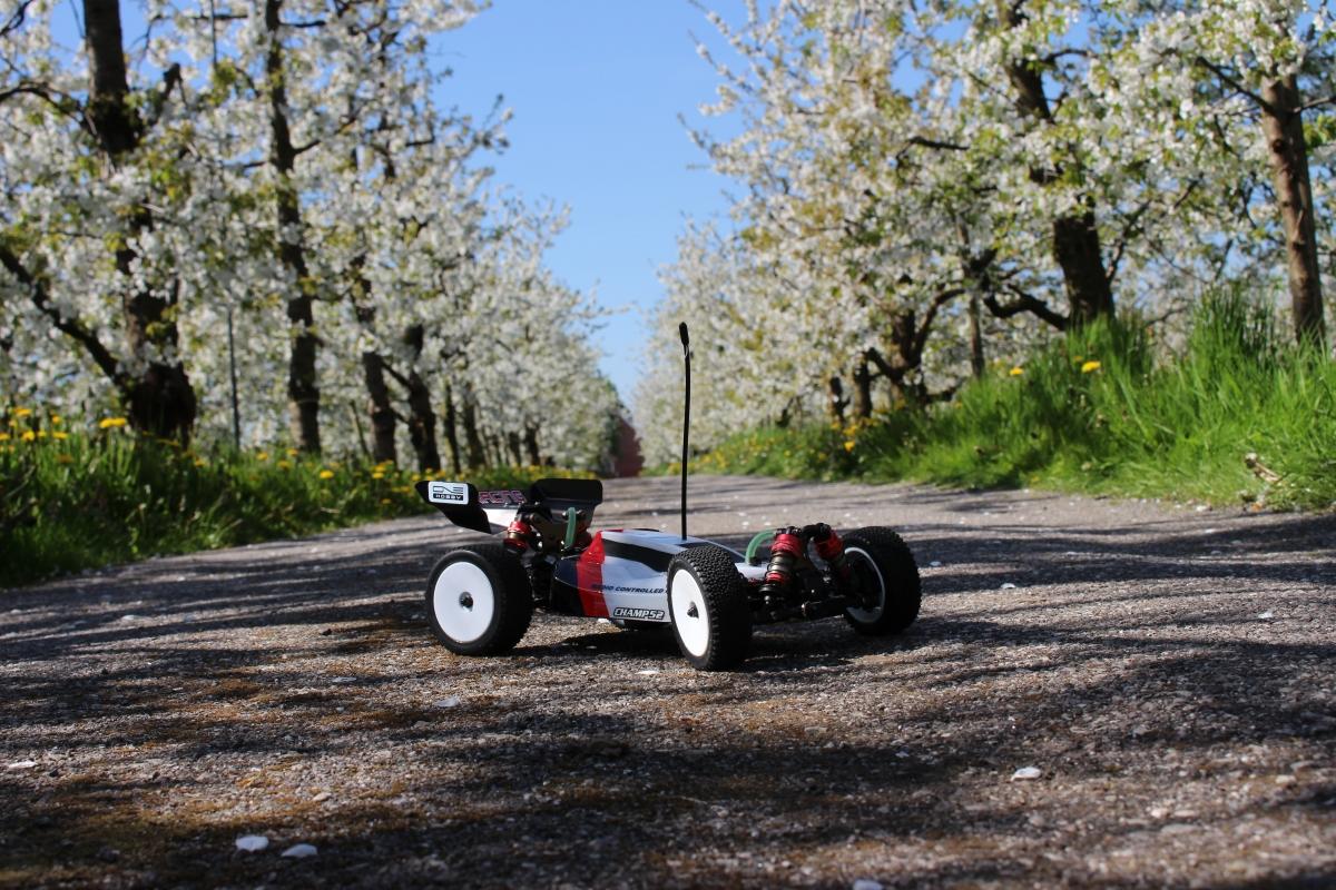 LC-Racing-Buggy-10