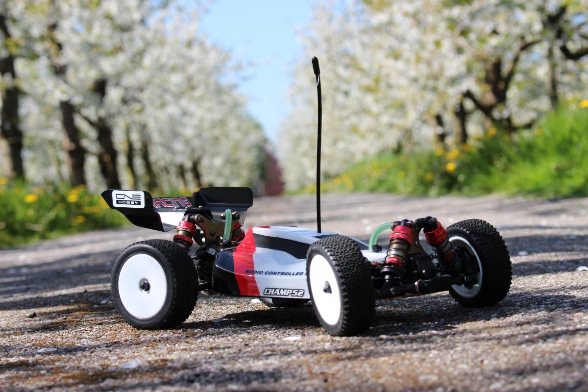LC-Racing-Buggy-9